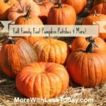 Thumbnail image for Find Pumpkin Patches, Halloween Festivals, Hay Rides,