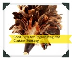 Thumbnail image for Good Tips for Organizing and Clutter Busting