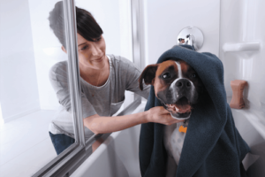 Thumbnail image for A Shower Door with Comfortable Tracks for Bathing Kids and Pets