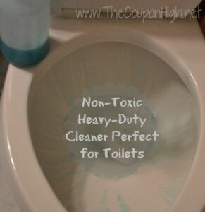 "DIY Cleaning Products non-toxic toilet bowl-cleaner ""recipe"""