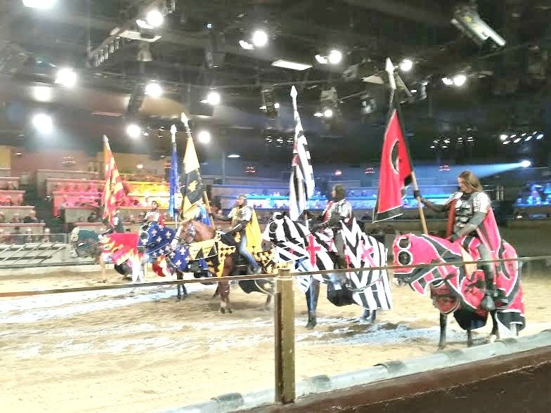 If you are looking for a very memorable family entertainment event, consider taking them to see a spectacular show at Medieval Times in Buena Park.