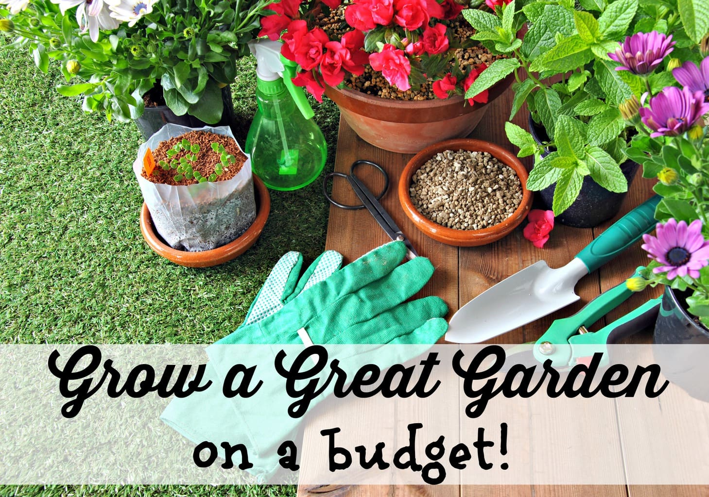 growing a garden great for the environment and the budget They gain an appreciation of their natural environment and  garden bed or veggie plot, it's a great way to  for more great ideas: sustainable gardening.
