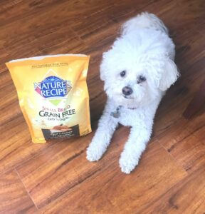 Nature's Recipe is now at Walmart. This is great news for pet parents this is what you feed your dog and been going to the pet food store.