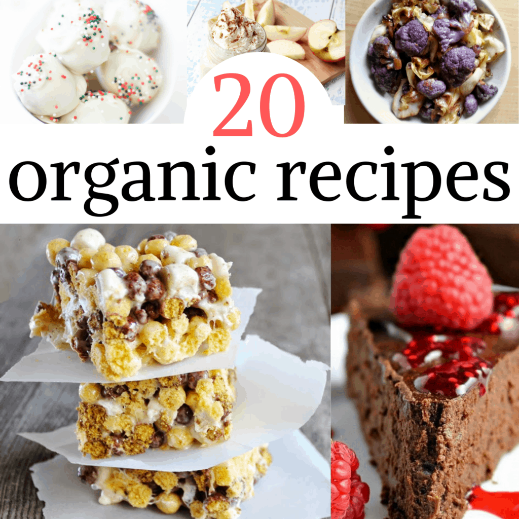 collage of 20 organic recipes