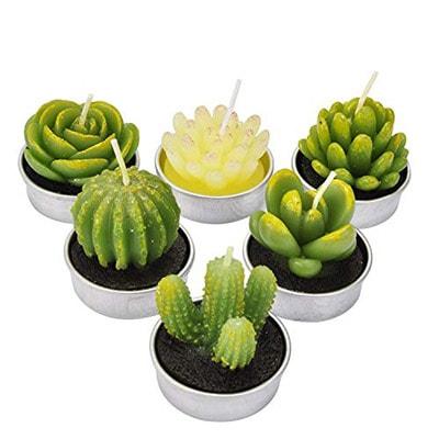 LA BELLEFÉE Tealight Cactus Candles, Delicate Succulent Handmade Cute Mini Plants Candles