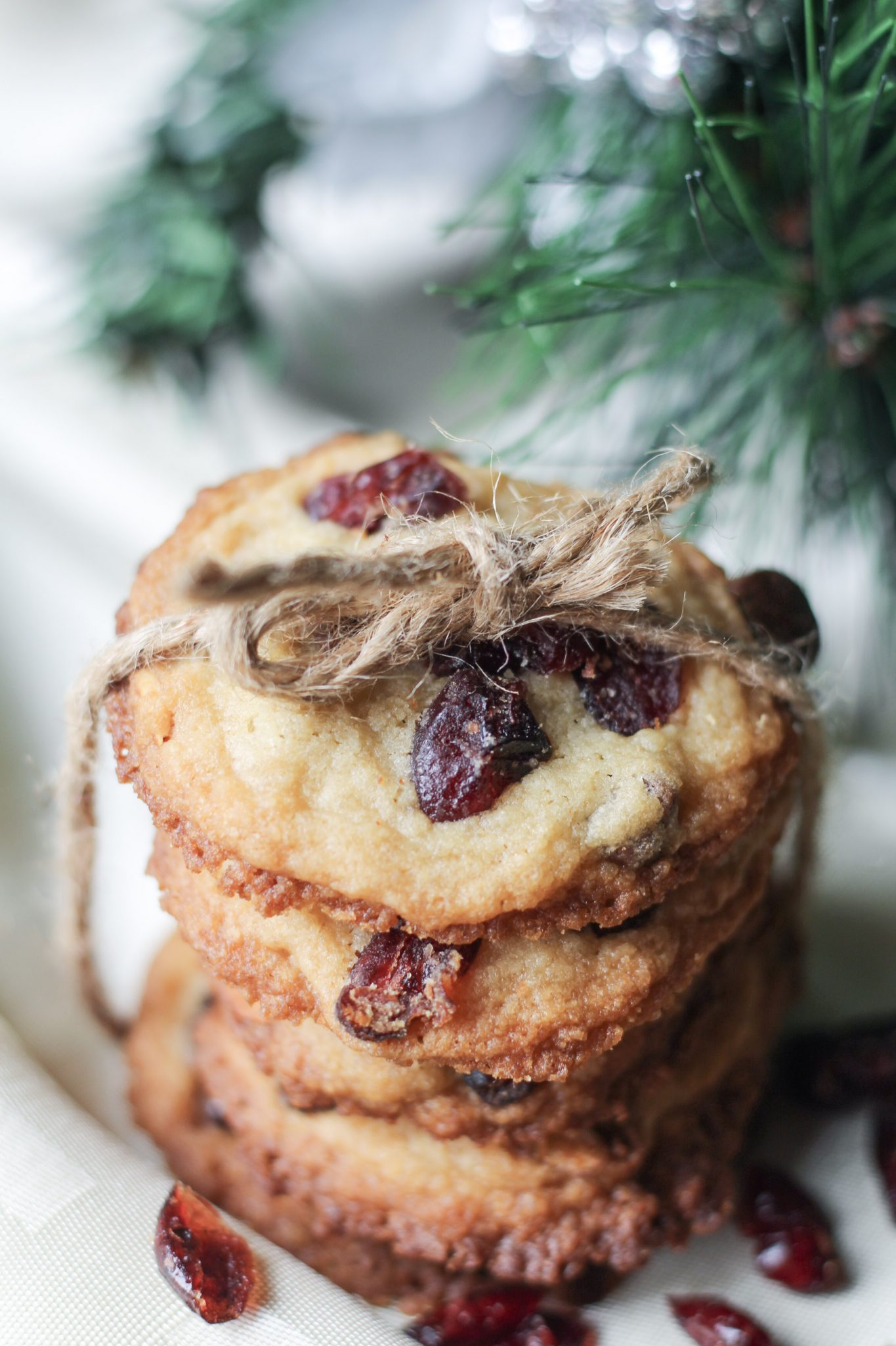 Cranberry and almond cookies tied up with a string