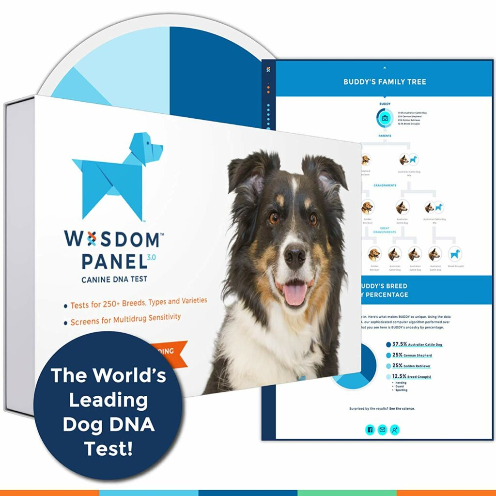 Wisdom Panel 3.0 Dog Breed Identification DNA Test Kit