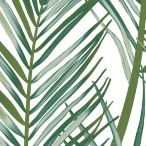 Transform White and Green Palm Peel and Stick Wallpaper