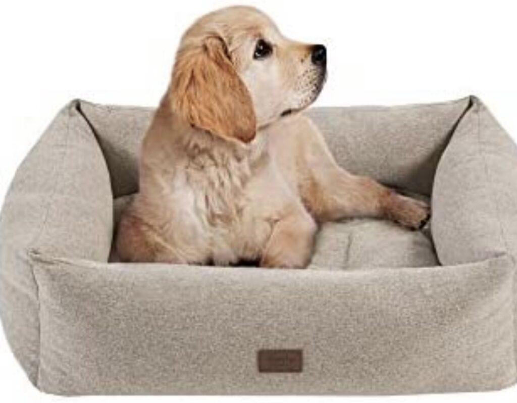 MARTHA STEWART Charlie Orthopedic Dog Bed Lounge Sofa