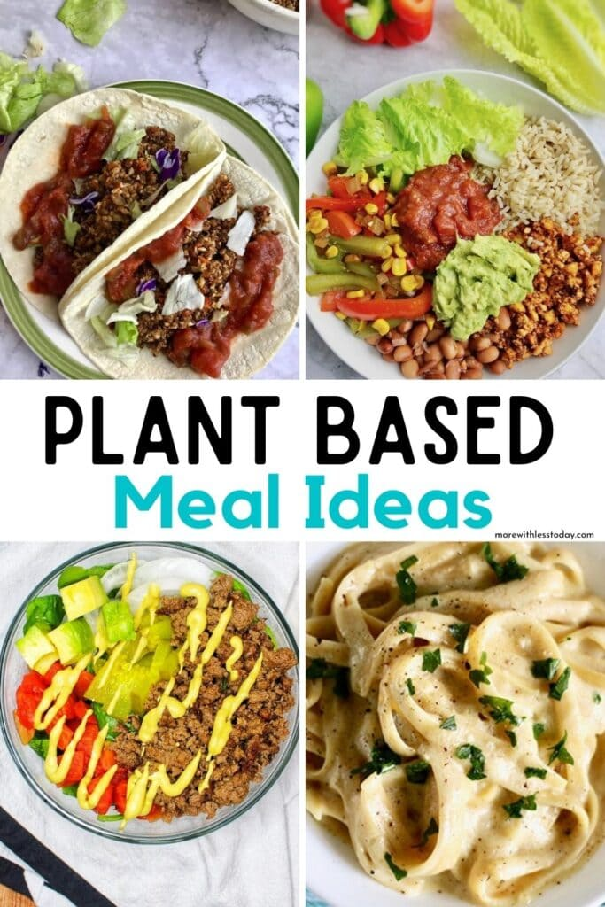 Plant Based Meal Ideas roundup of recipes