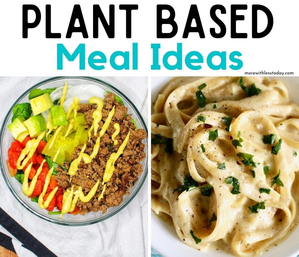 Plant Based Meal Ideas recipe roundup