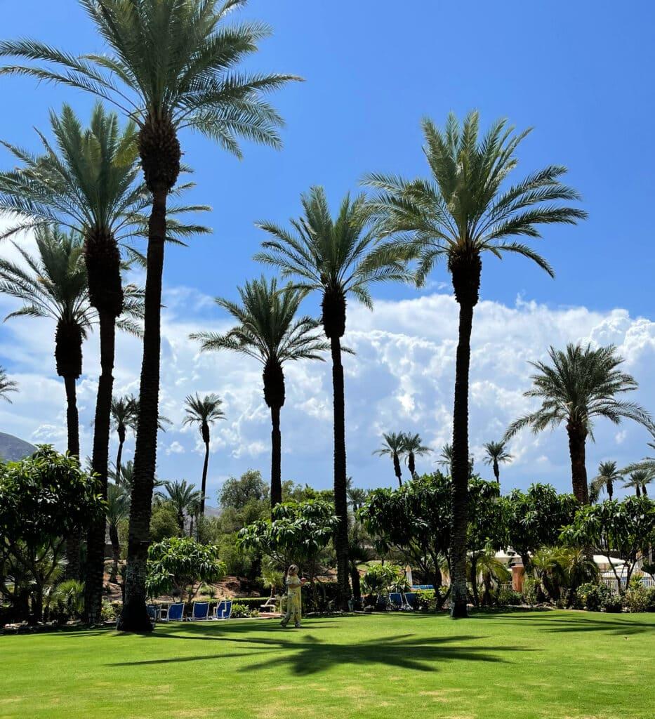 Renaissance Esmeralda Resort & Spa wedding area